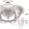 産後骨盤矯正をお考えの方は|吹田市|いちのま整骨院